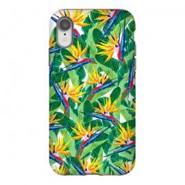 iPhone Xr  Summer Strelitzia by  (birdofparadise,strelitzia,flowers,floarl,botanical,greenery,green,plants)