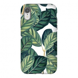 Botany by Uma Prabhakar Gokhale (graphic, pattern, nature, botanical, botany, greenery, exotic, tropical, leaves)
