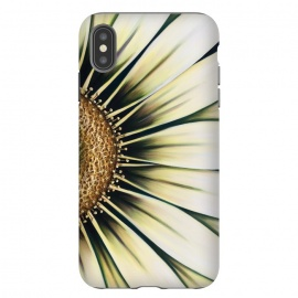 iPhone Xs Max  White Gazania by Denise Cassidy Wood