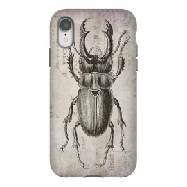 Stag Beetle Vintage Mixed Media Art by Andrea Haase