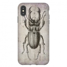 iPhone Xs Max  Stag Beetle Vintage Mixed Media Art by Andrea Haase