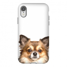 iPhone Xr  Chihuahua Portrait by Alemi