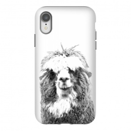 Black and White Alpaca by Alemi