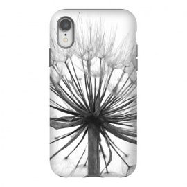 iPhone Xr  Black and White Dandelion by Alemi