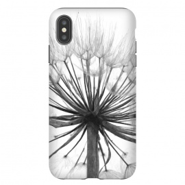 iPhone Xs Max  Black and White Dandelion by Alemi