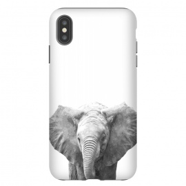 Black and White Baby Elephant  by Alemi
