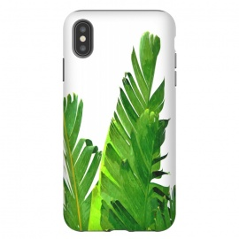 Palm Banana Leaves by Alemi