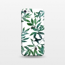 iPhone 5C  Olive Tree Print by Becky Starsmore