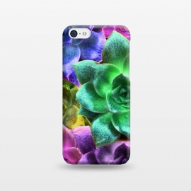 Succulent Plants Psychedelic Colors Pattern by BluedarkArt
