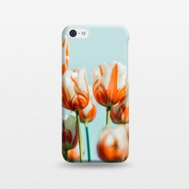 iPhone 5C  Estelle by Uma Prabhakar Gokhale (color, digital manipulation, floral, flowers, wildlife, meadow, garden, coral, orange, sky, blue, minimal, summer)