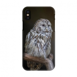 iPhone X  A lovely cute painted owl with a brown background by
